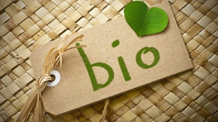 Ce sunt produsele bio?