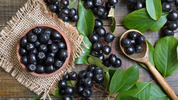 Cum sa iti cresti imunitatea cu fructele de aronia